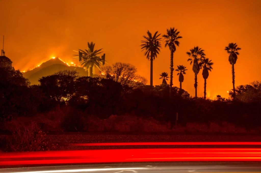 Wildfires engulf forests in California.