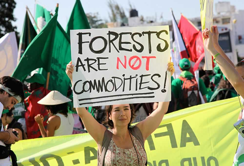 An activist protests for forests.