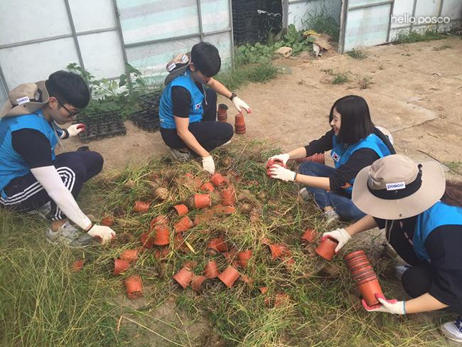 농촌봉사활동