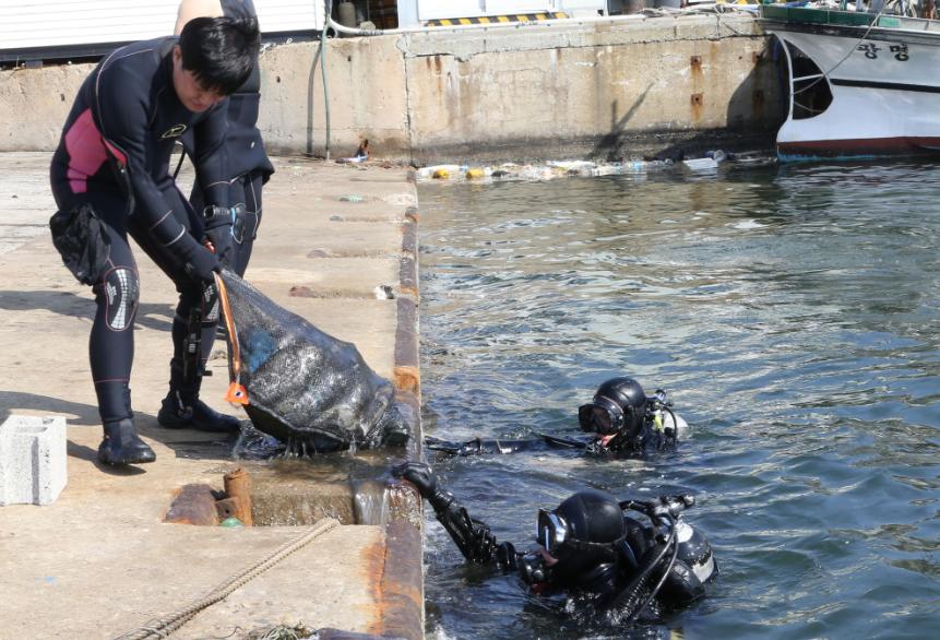 포항 클린오션봉사단원들이 제6회 바다식목일 행사에 참여해 바다속 정화작업을 실시하고 있는 모습