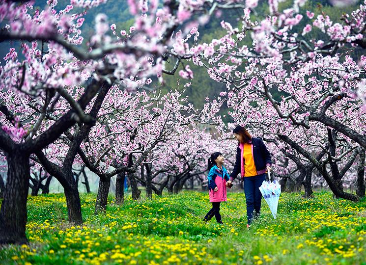 이청이 작품 사. 활짝 꽃이 핀 나무들 아래로 우산을 든 엄마와 딸아이가 얼굴을 마주보며 웃고 있다.