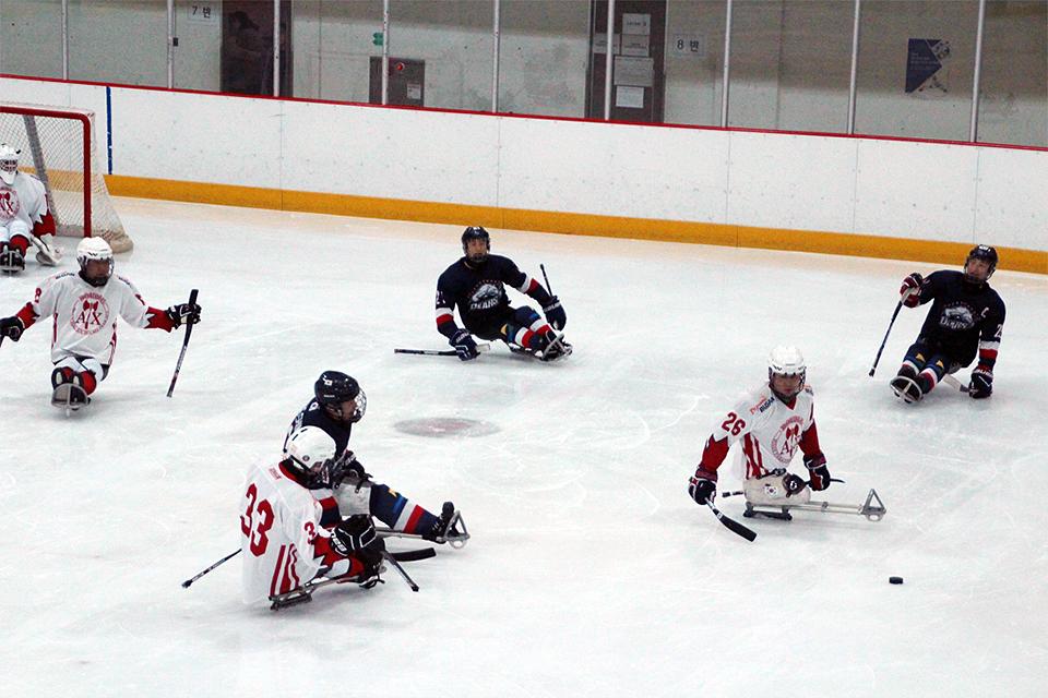 2018 포스코배 전국장애인아이스하키대회에서 선수들이 경기 중인 모습