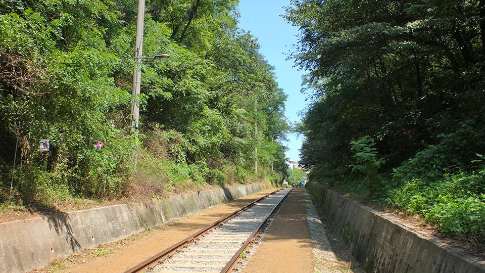 항동철길 사진 스팟 첫 번째, 솔길을 따라 이어지는 철길의 모습.