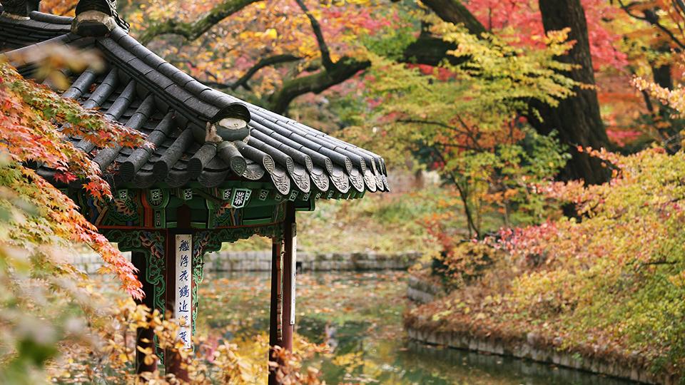 창덕궁 후원, 출처:pixabay
