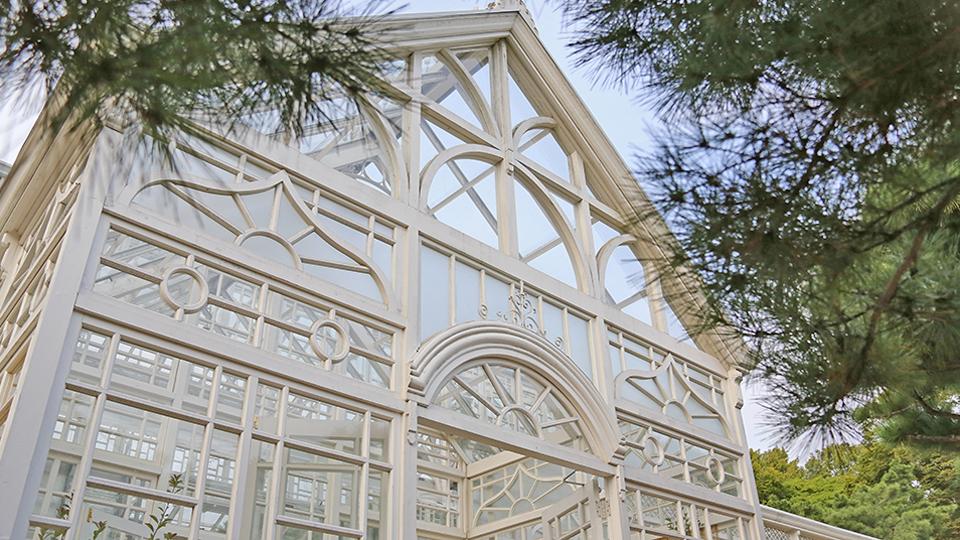목조 구조에 철제를 덧붙인 후 유리를 두른 서양식 온실인 창경궁 대온실