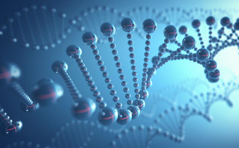 DNA 구조를 3D로 구현한 모습.