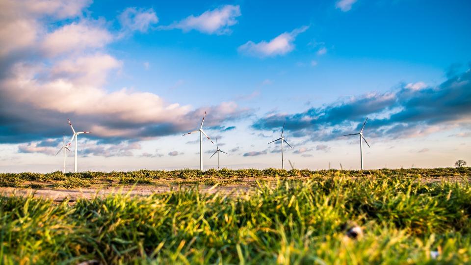 넓은 들판 위에 풍력 발전기들이 설치 되어있다.