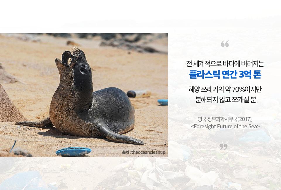 물개가 해변가에 버려진 플라스틱을 먹고 있다. (전 세계적으로 바다에 버려지는 플라스틱은 연간 3억 톤, 해양쓰레기의 약 70%이지만 분해해되지 않고 쪼개질 뿐이다. 영국 정부과학사무국(2017), <foresight Future of the Sea>보고서에서 발췌)