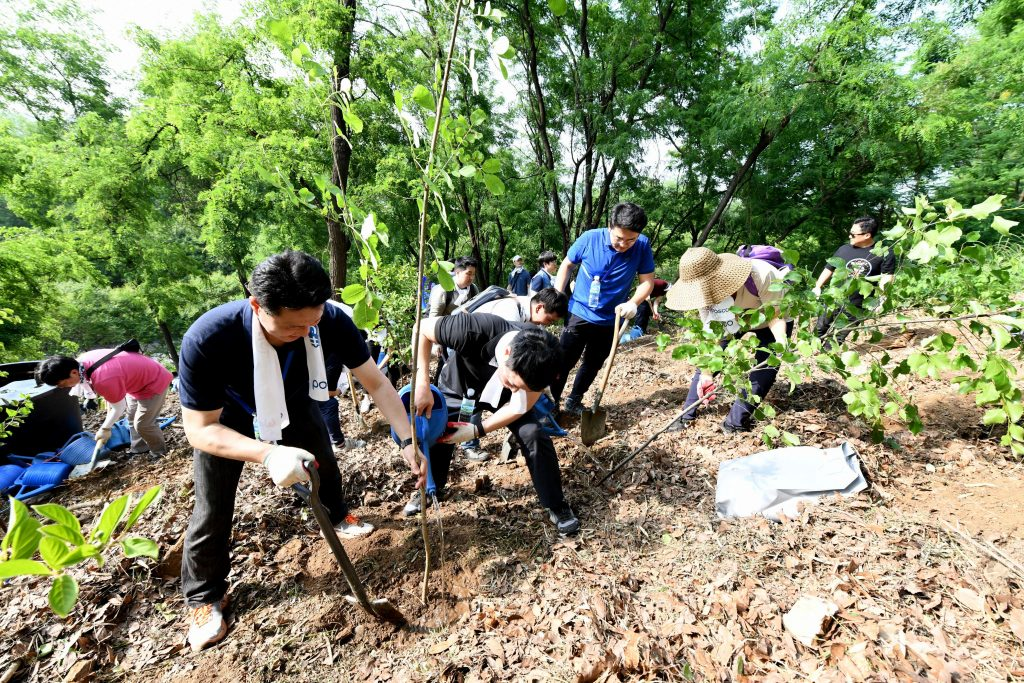 나무심기 봉사를 하고 있는 포스코 임직원들