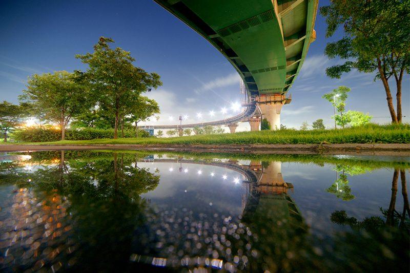 김호 작가의 사진 곡선의 미학
