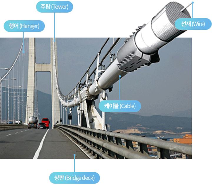 현수교의 구조를 설명하고 있는 표. 주탑(Tower), 행어(Hanger), 케이블(Cable), 선재(Wire), 상판(Bridge deck)을 안내한다.