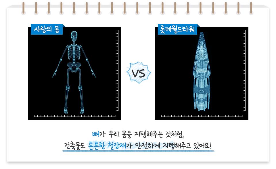 사람의 몸 인체 몸 뼈 사진 VS 롯데월드타워 높은 곳으로 갈수록 뾰족해지는 모양의 고층빌딩 사진 뼈가 우리 몸을 지탱해주는 것처럼, 건축물도 튼튼한 철강재가 안전하게 지탱해주고 있어요!