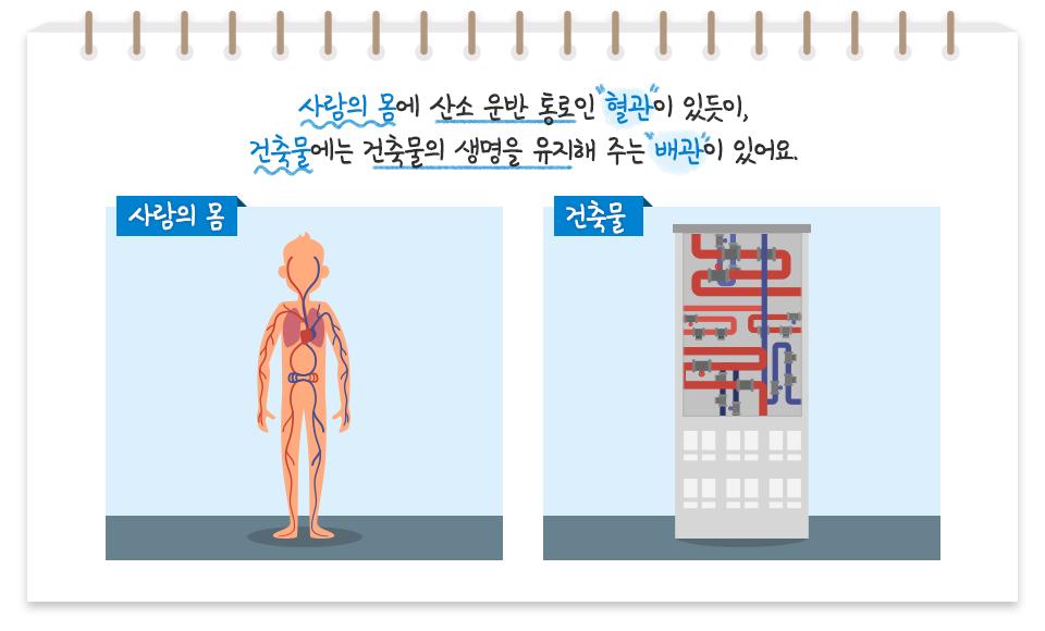 """사람의 몸에 산소 운반 통로인 """"혈관""""이 있듯이, 건축물에는 건축물의 생명을 유지해 주는 """"배관""""이 있어요. (좌)사람의 몸 혈관이 그려진 사람 몸 일러스트 (우)건축물 배관이 그려진 빌딩 일러스트"""